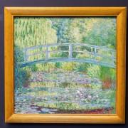 Cataracte de Monet