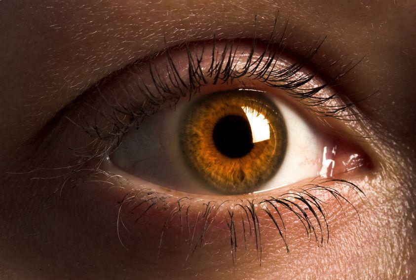 réaction pupillaires